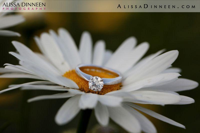 Elizabeth Park Bond Ballroom Wedding